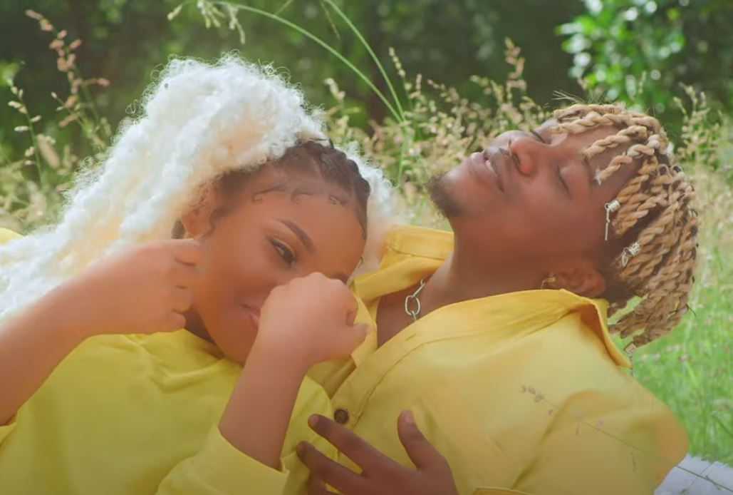 Download mp4 video: Rayvanny Ft Zuchu – Number One